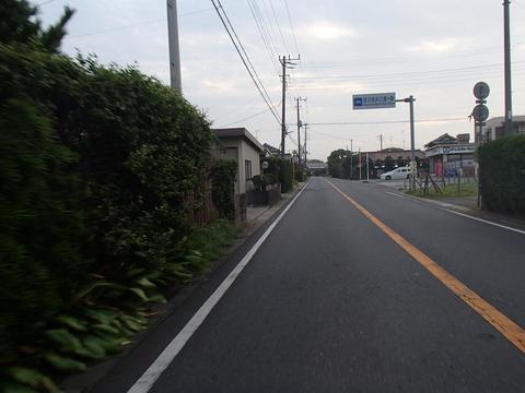 P8120051.jpg