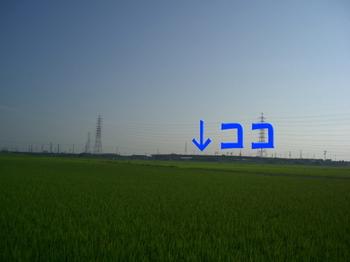 tobishima.jpg
